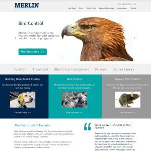 merlin website